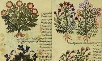 نمایشگاه گیاهان شفابخش بر اساس طب سنتی ایرانی- اسلامی