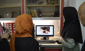 نخستین روز دهمین جشنواره فرهنگی- هنری ماه هشتم در کتابخانه و موزه ملی ملک