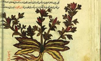روایتی از تاریخ علم ایران در کتابخانه و موزه ملی ملک؛ به مناسبت گشایش تالار علوم